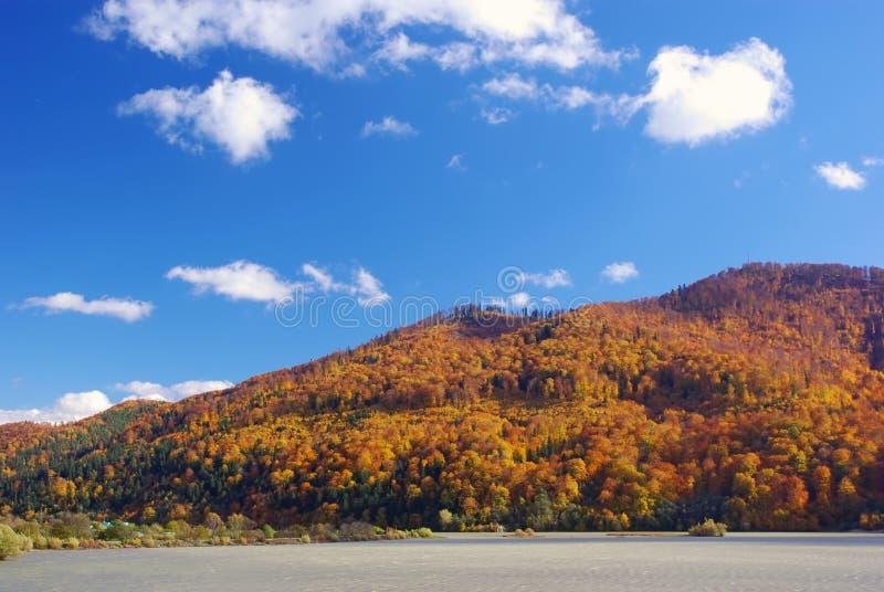 Lago y bosque en otoño fotos de archivo libres de regalías