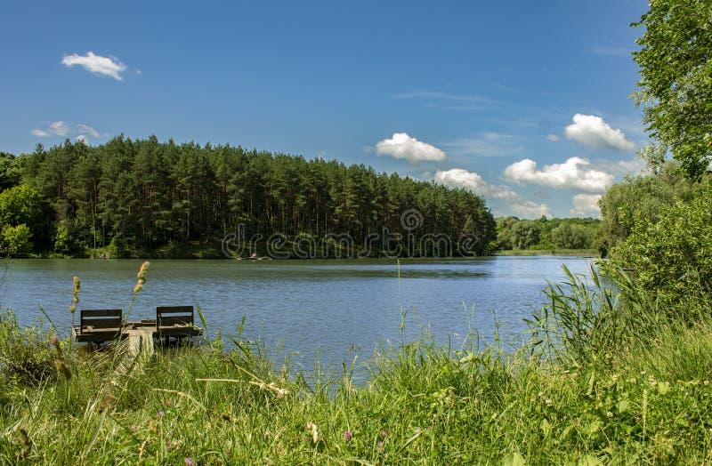 Lago y bosque hermosos en el fondo, el cielo azul y las nubes blancas fotografía de archivo