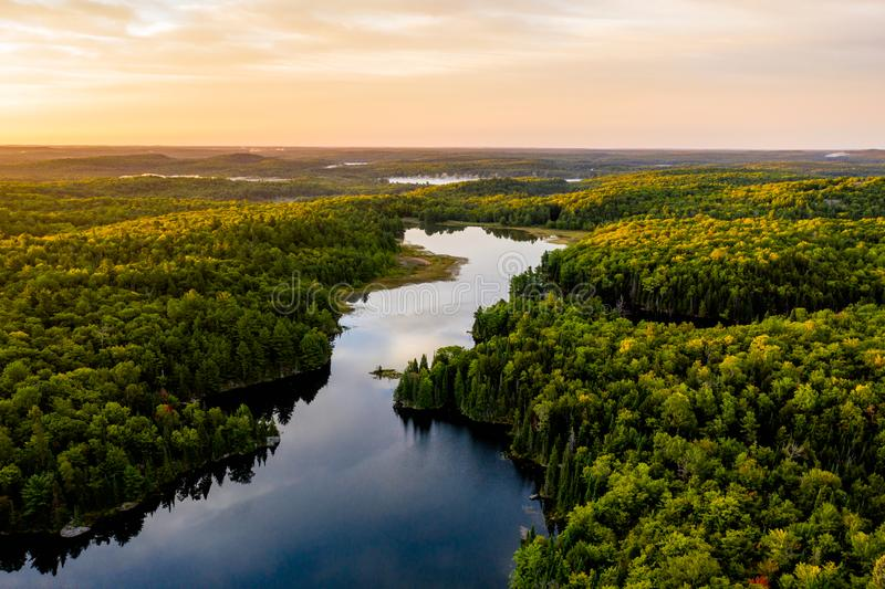 Lago y bosque por la mañana desde arriba foto de archivo