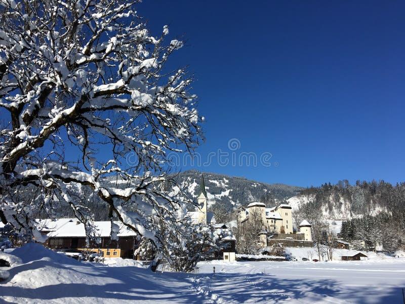 Lago y castillo, Austria Goldegg fotos de archivo libres de regalías
