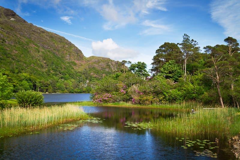 Lago Y Montañas Connemara Fotografía de archivo