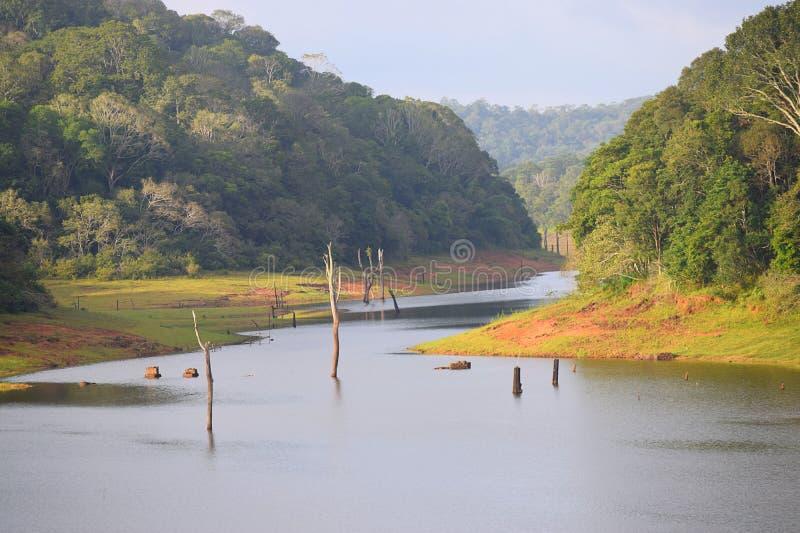 Lago y parque nacional, Thekkady, Kerala, la India Periyar imagen de archivo libre de regalías