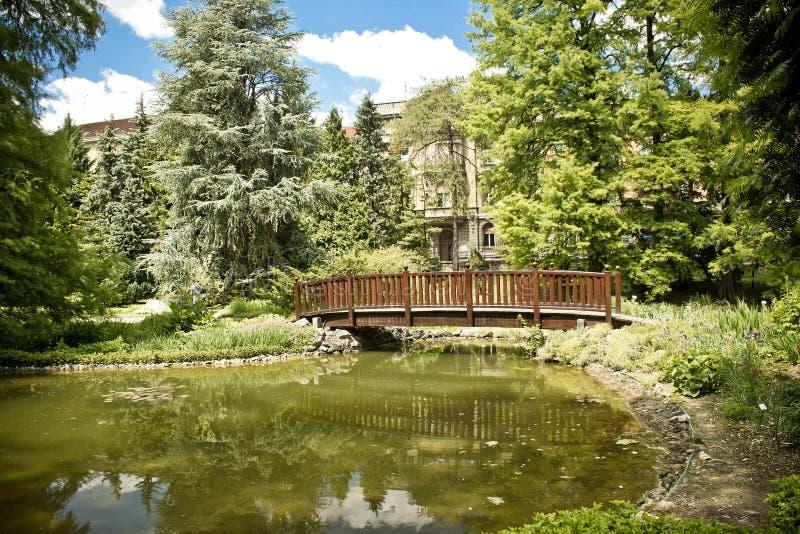 Lago y puente del jardín botánico de Zagreb fotos de archivo libres de regalías