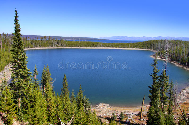 Download Lago Yellowstone foto de stock. Imagem de floresta, unido - 26511756