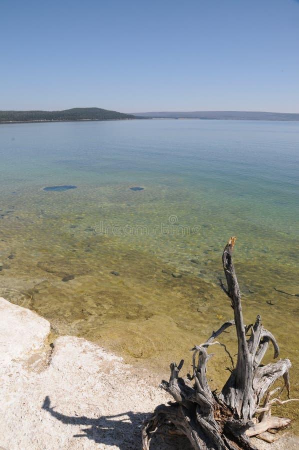 Lago Yellowstone foto de stock