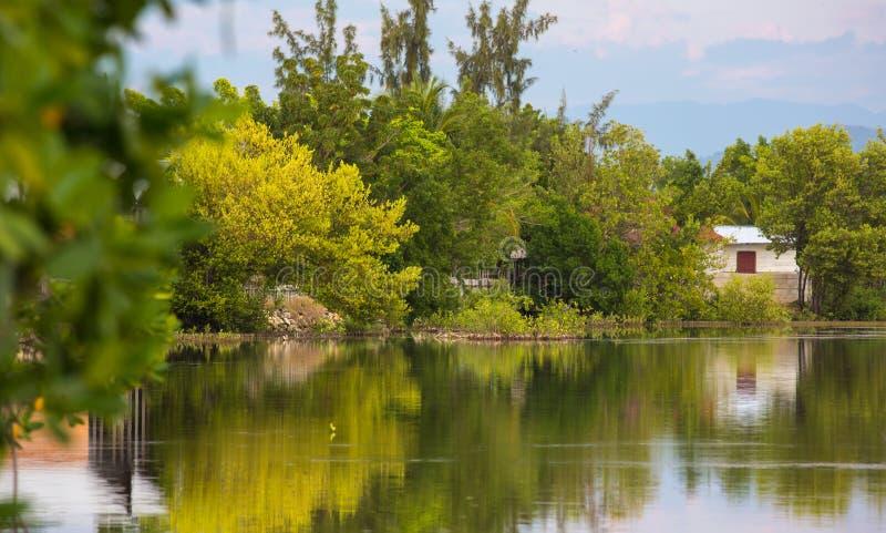 Lagoa bonita com árvores refletindo fotos de stock