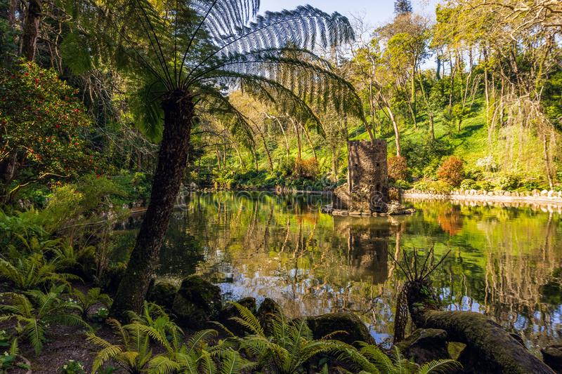 Lagoa bonita no parque de Pena perto do pal?cio nacional famoso de Pena Sintra fotos de stock royalty free