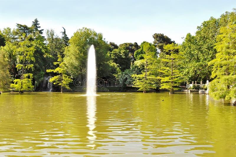 Lagoa com jorro da água imagem de stock