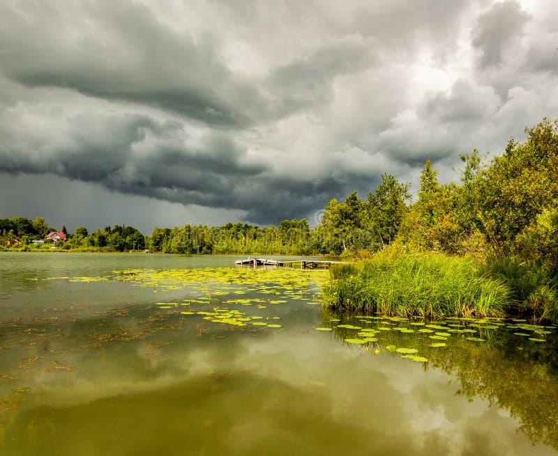 Lagoa com vagens amarelas fotos de stock royalty free