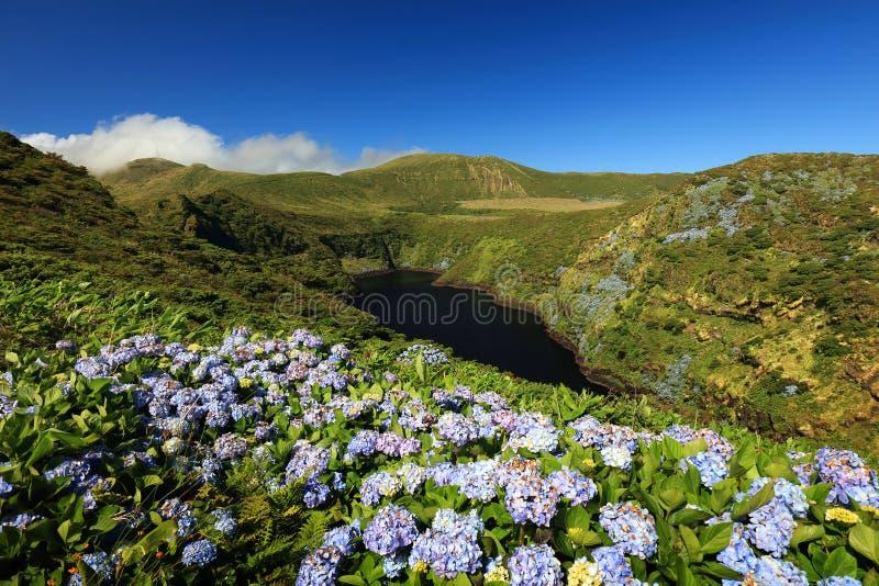 Download Lagoa Comprida W Angielskim Długi Jezioro, Flores Wyspa Zdjęcie Stock - Obraz złożonej z greenbacks, długi: 106922704