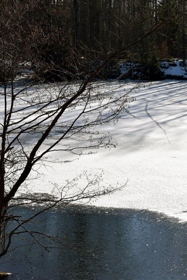 Lagoa congelada imagens de stock