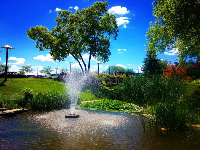 Lagoa da rã em Frankenmuth, MI foto de stock royalty free