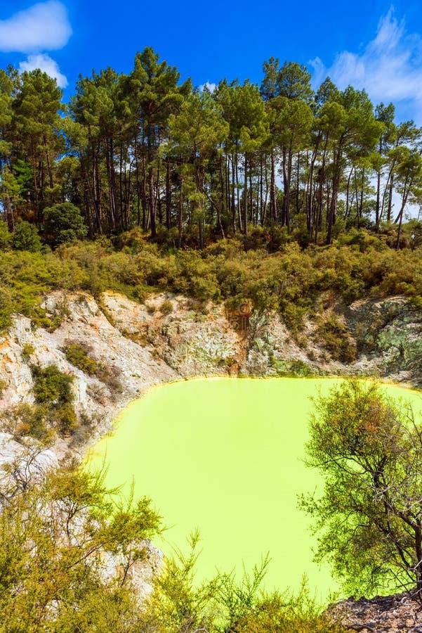 A lagoa de água, fez amarelo pelo enxofre no país das maravilhas geotérmica de Wai-O-Tapu, Rotorua, Nova Zelândia vertical fotografia de stock royalty free