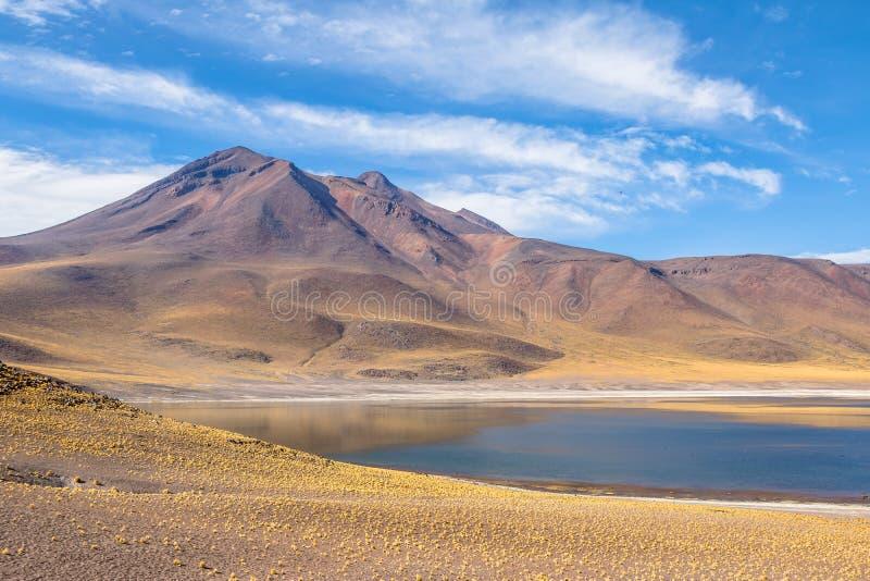 Lagoa de Miniques e vulcão - deserto de Atacama, o Chile fotografia de stock royalty free