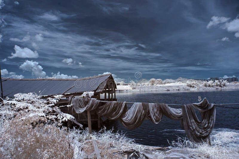 Lagoa de peixes infravermelha imagem de stock royalty free