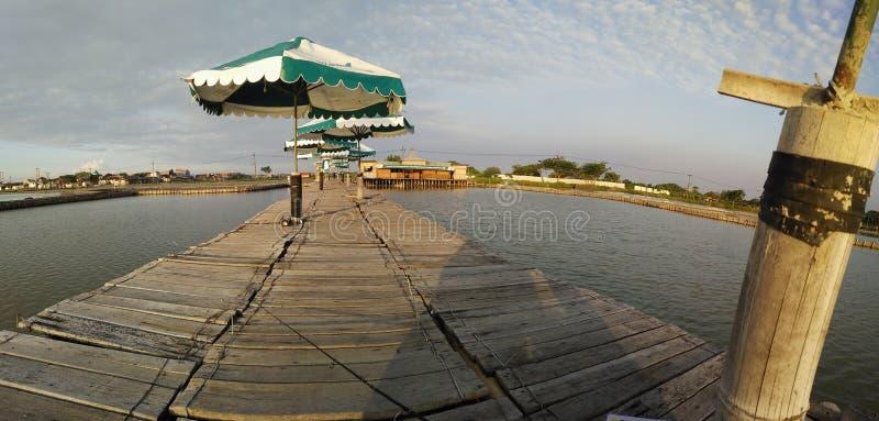 Lagoa de pesca imagem de stock royalty free
