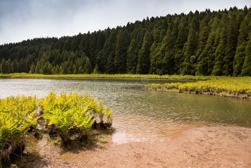 Lagoa do Canario, Sao Miguel, Azores royalty free stock image
