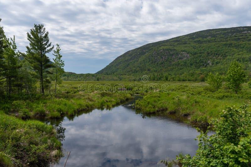 Lagoa do castor no parque nacional do Arcadia fotografia de stock