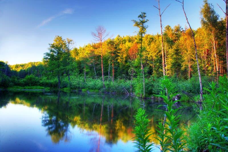 Lagoa do castor no por do sol fotografia de stock royalty free