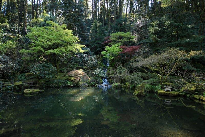 Lagoa do jardim ainda imagem de stock