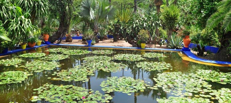 Lagoa do jardim de Majorelle foto de stock