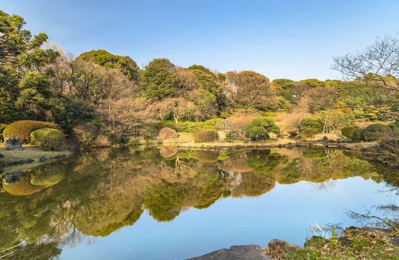 A lagoa do jardim japonês dos jardins botânicos de Koishikawa fotografia de stock