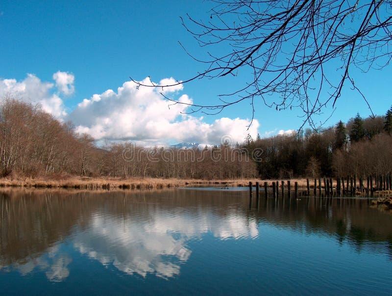 Lagoa do moinho fotos de stock