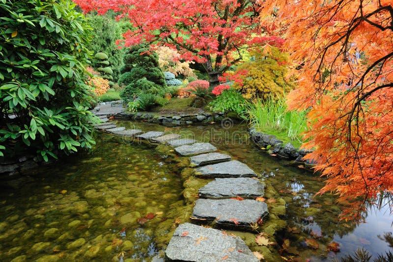 Lagoa e estrada do jardim fotografia de stock