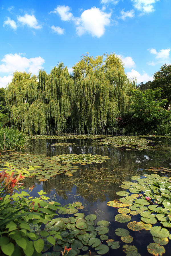 Lagoa e jardim foto de stock royalty free