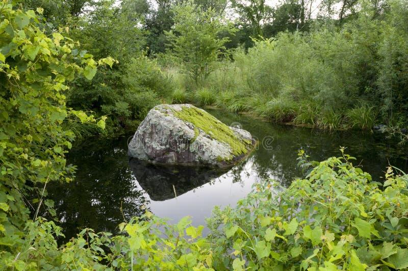 Lagoa e rocha Mossy imagens de stock royalty free