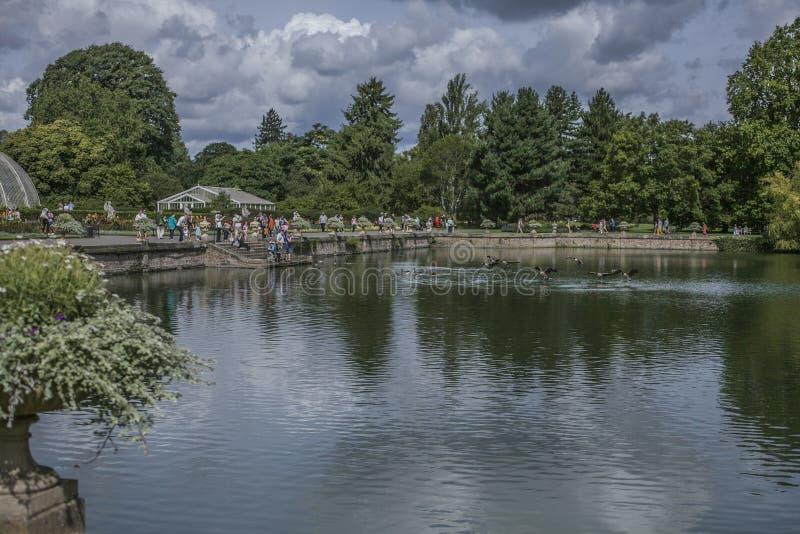 A lagoa em jardins de Kew e nos patos fotografia de stock