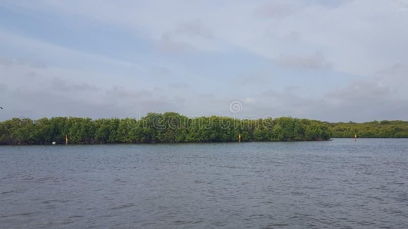Lagoa em Negombo em Sri Lanka fotografia de stock royalty free