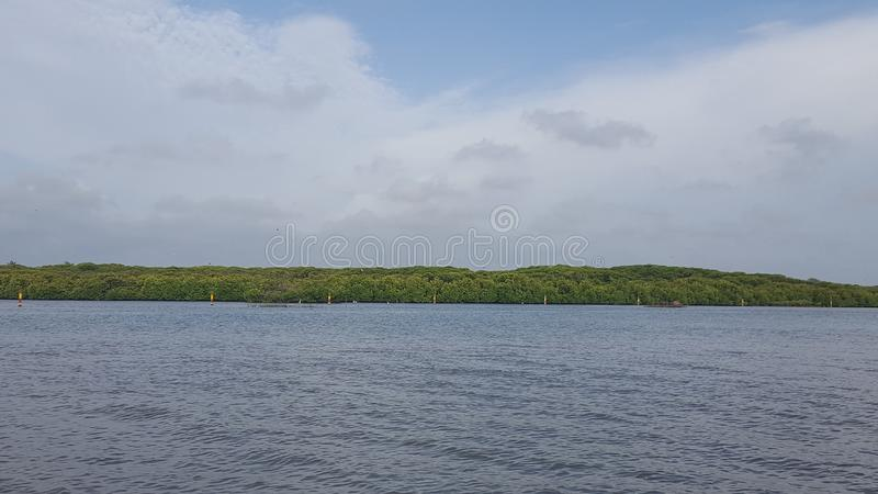 Lagoa em Negombo em Sri Lanka imagem de stock royalty free