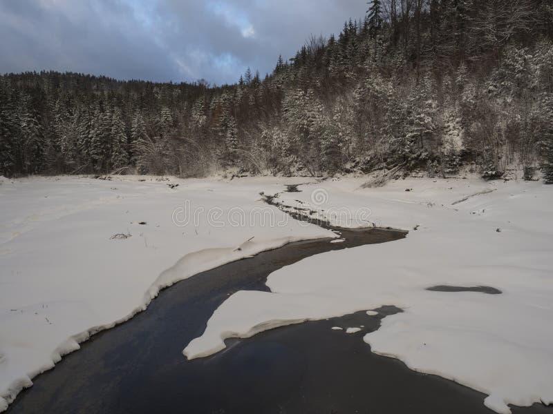 Lagoa em parte congelada coberto de neve ou lago da floresta com angra do córrego da água com a floresta da árvore do abeto verme imagem de stock royalty free