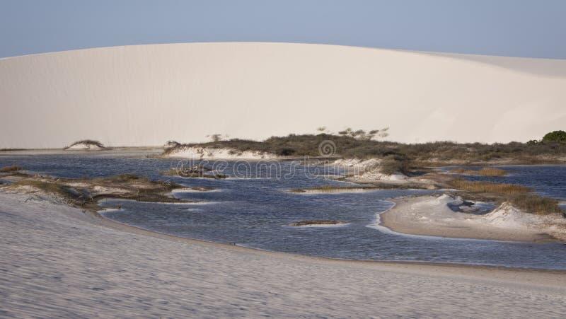 Lagoa em um deserto imagem de stock royalty free