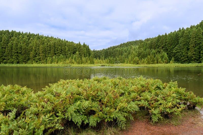 Lagoa faz Canario na ilha do Sao Miguel nos Açores, Portugal imagens de stock royalty free