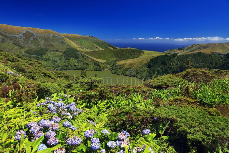 Lagoa Funda das Lajes, Flores ö royaltyfri foto