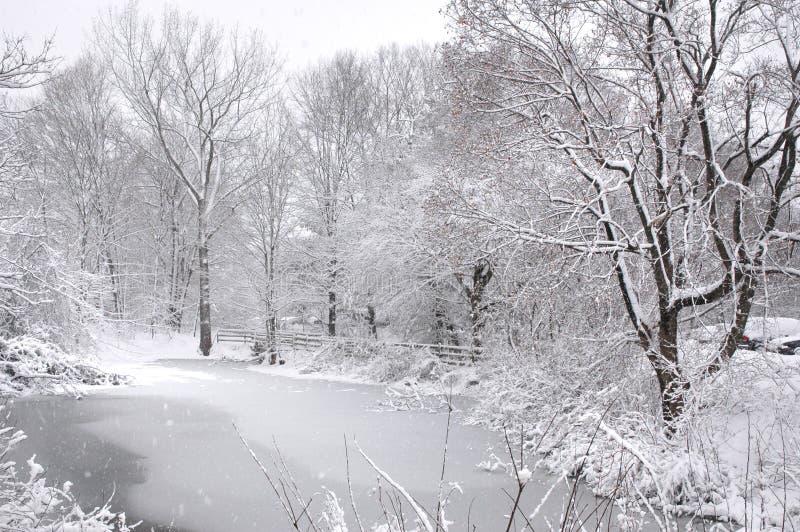 Lagoa gelada em Nova Inglaterra fotos de stock