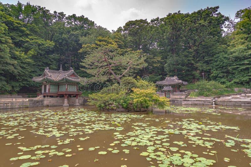 Lagoa, jardim secreto do palácio do changdeokgung fotografia de stock royalty free