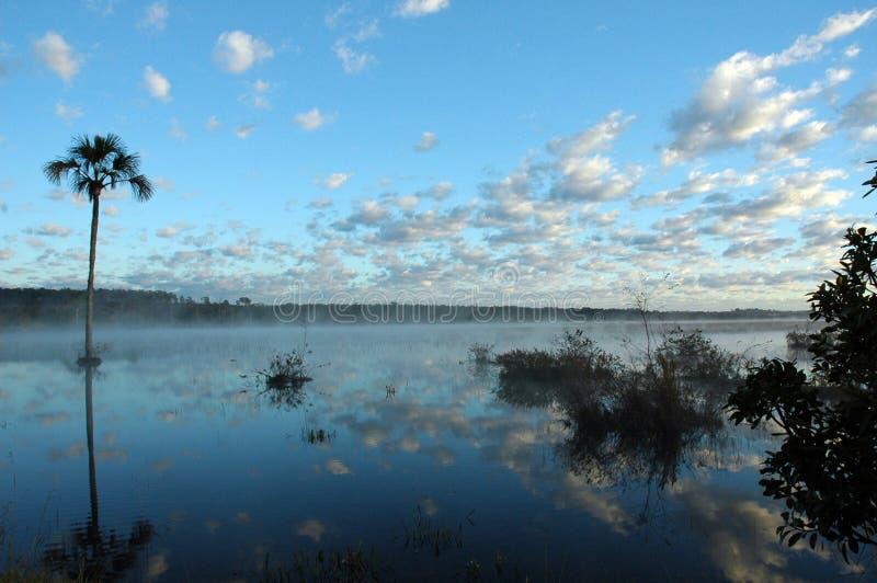 Lagoa Mestre D \ 'armas fotos de archivo