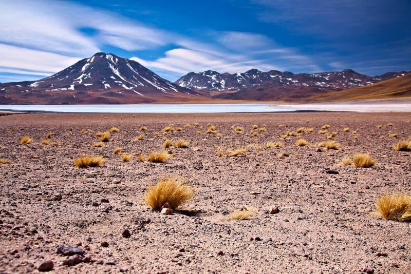 Lagoa Miscanti perto de cerro Miscanti imagens de stock