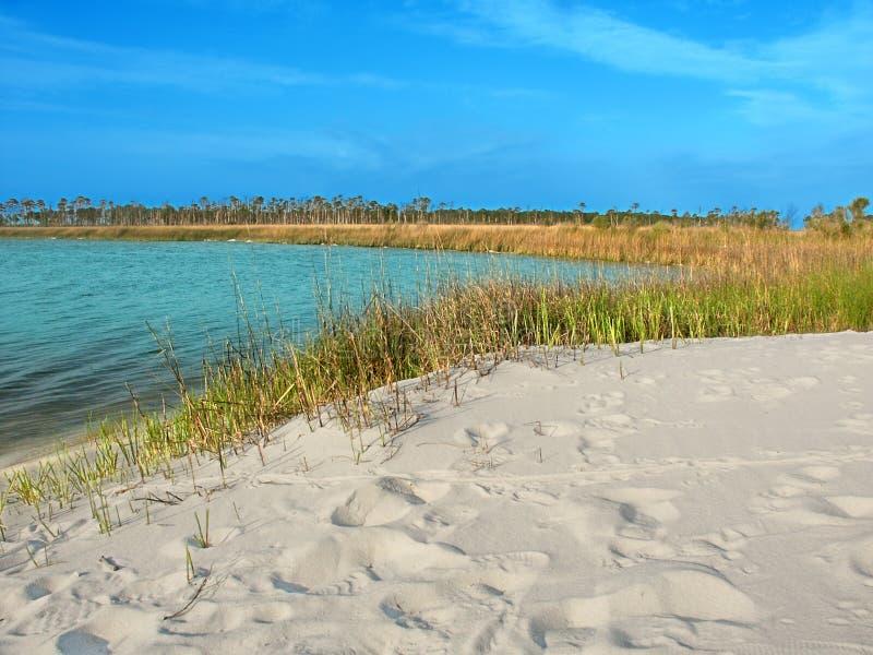 Lagoa Mississippi da ilha do chifre foto de stock