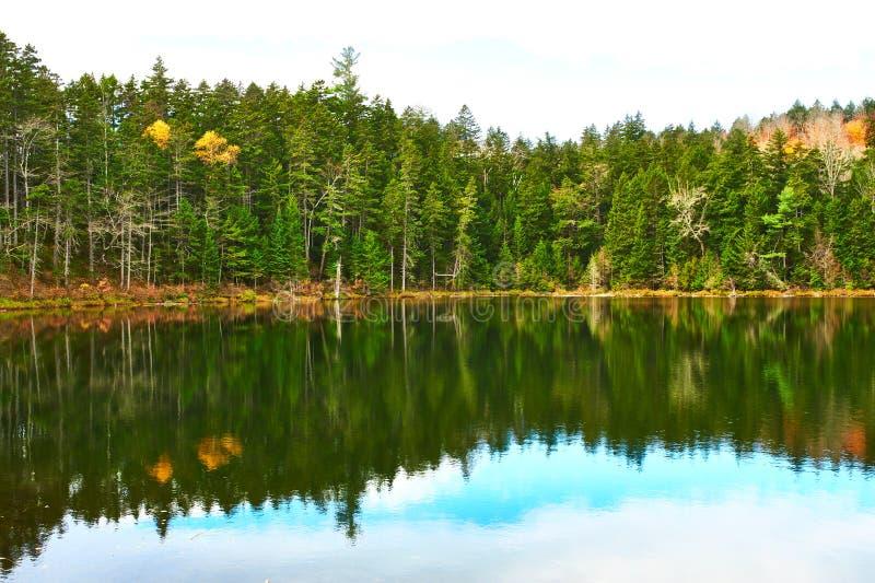 Lagoa na floresta nacional da montanha branca, New Hampshire foto de stock