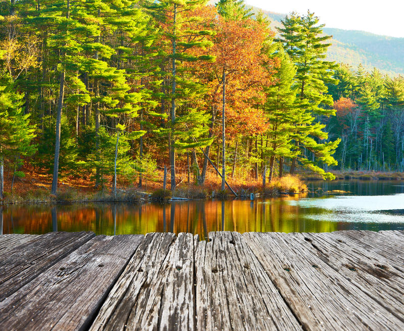 Lagoa na floresta nacional da montanha branca, New Hampshire fotos de stock royalty free