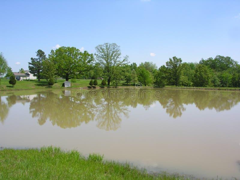 Lagoa na propriedade do país fotos de stock