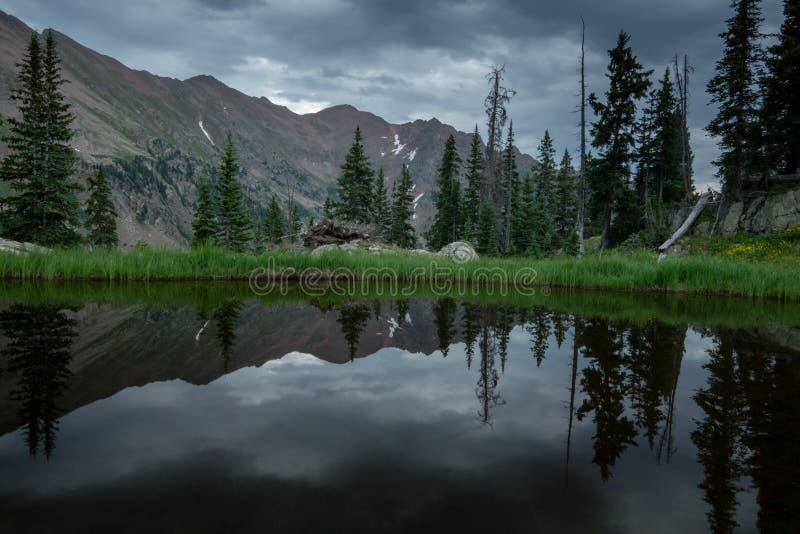 Lagoa na região selvagem do ninho de Eagles imagem de stock