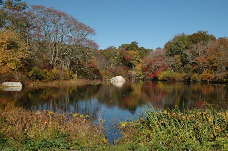 Lagoa no outono fotos de stock