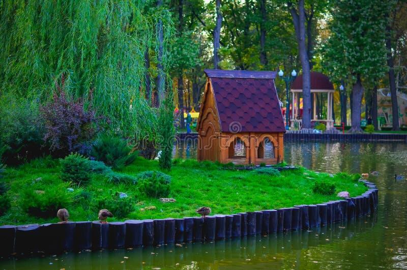 Lagoa no parque imagens de stock royalty free