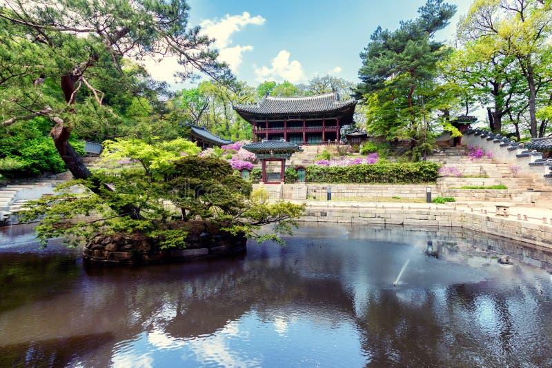 Lagoa no parque de Huwon, jardim secreto de Buyeongji, Changdeokgung p fotos de stock royalty free