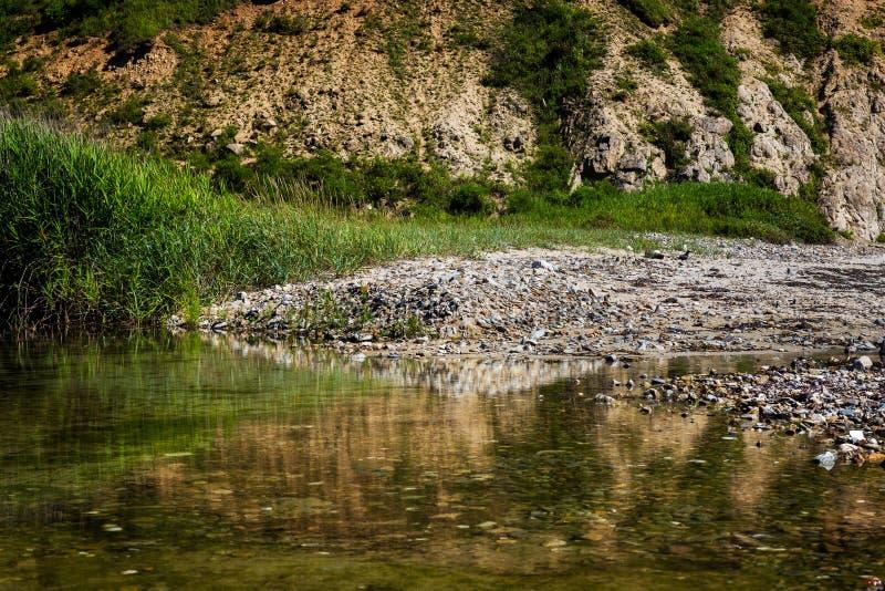 Lagoa pequena com reflexão da grama perto do beira-mar calmo foto de stock